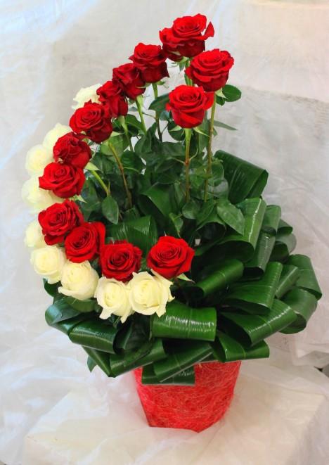 Композиция из красных и белых роз