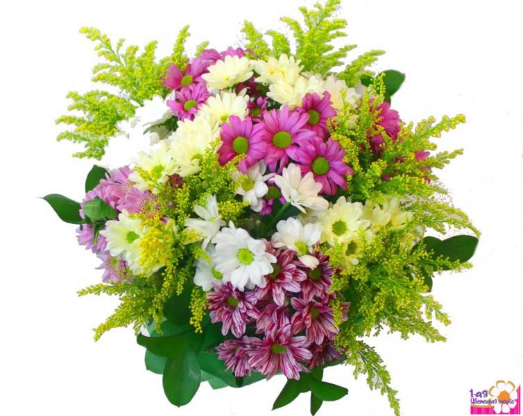 Купить тюльпаны на белой даче самые дешевые живые цветы в чехове купить