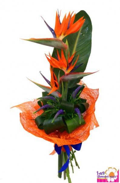 Фламинго доставка цветов