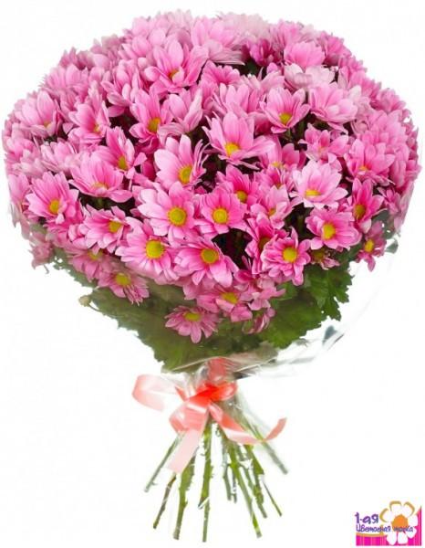 Доставка цветов по мос области не дорого амф международная сеть доставки цветов вакансии