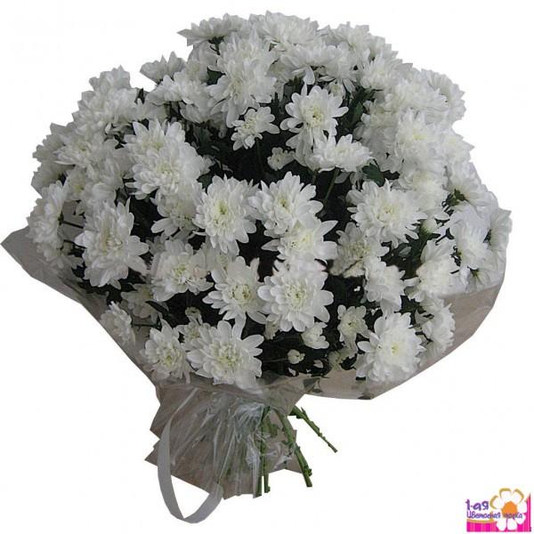 Цветы белые кустовые