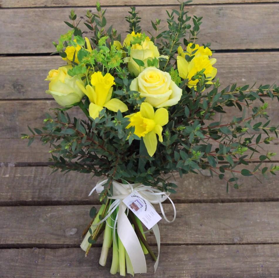 высокие комнатные цветы название и фото