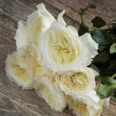 Картинки цветов шикарных букетов